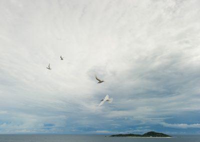07b_SUN-2011-10-04-082235
