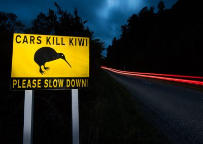 Kiwi road signal, Okarito sanctuary, New Zealand