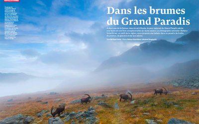 Gran Paradiso, cover and portfolios